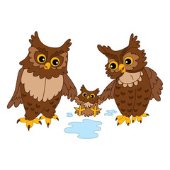 Vector Cute Cartoon Owls