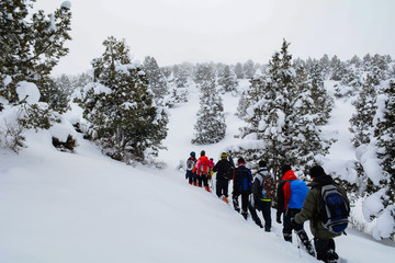 group performing a walking activity in snowy mountains
