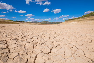 landscape of dry earth ground and trees in the horizon, in Entrepenas reservoir, in Guadalajara, Castilla, Spain Europe