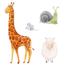 Cute watercolor animal set
