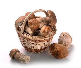 Autumn Cep Mushrooms in a wicker basket
