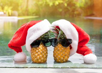 Couple pineapples on winter holidays