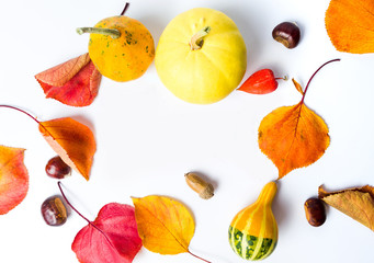 Autumn and Thanksgiving abstract background with copy space