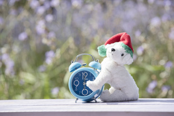 White dog doll with blue clock on backdrop