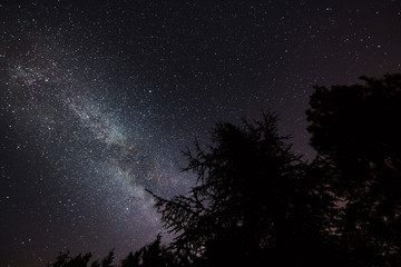 breathtaking night sky landscape with milky way popping out brightly on the trees silhouette, Provence, south France