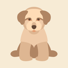dog puppy flat style vector illustration front