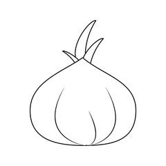 Garlic spice vegetable