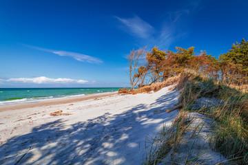 Weststrand of Baltic Sea near Prerow