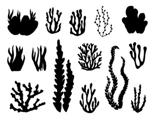 algae and corals set of vector silhouettes