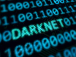 Darknet text between random binary code screen