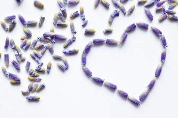 lavender flower heart shape background