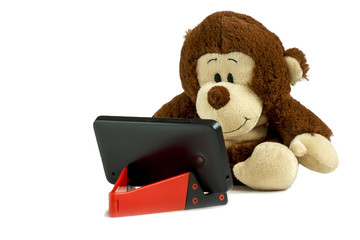 The monkey looks tablet. Isolated