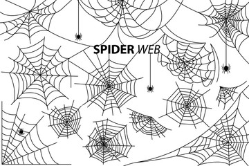 Spider Web Collection of Illustrations on White