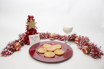 Christmas Cookies and Milk for Santa