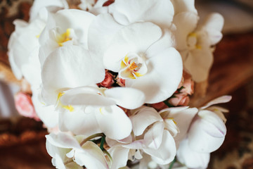 Wedding bouquet made of orchid and roses lies on the bed