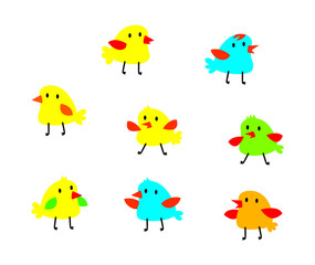 cute bird vector colelction