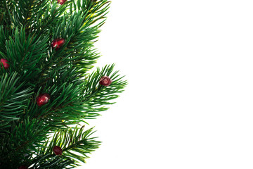 Background with fir branches for the Christmas menu, text