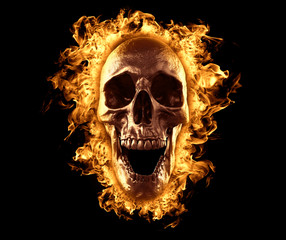 Skull burned in fire wallpaper 3d rendering