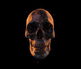 burned skull wallpaper 3d illustration