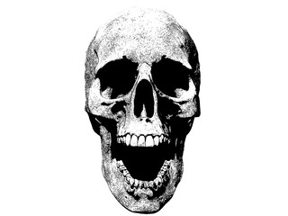 skull screaming illustration isolated in background
