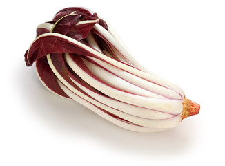 radicchio rosso di treviso tardivo, italian red chicory isolated on white background
