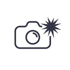Camera icon vector illustration. Isolated photocamera with flash symbol. Photo camera line concept. Photo gadget graphic design. Editable Stroke