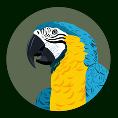 Portrait of a macaw parrot flowers