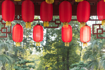 Red chinese lanterns hanging with trees in sunlight in the background in BaiHuaTan public park, Chengdu, China