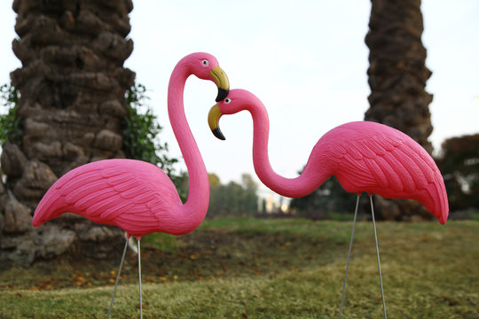 a pair of plastic flamingoes in the garden