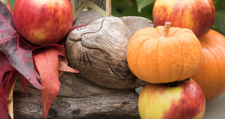 Close-up: image of a wooden slumbering cat is in a garden among autumn red leaves, ripe fresh apples and orange pumpkins. Autumn is a symbol of quiet dreams and rest of nature.