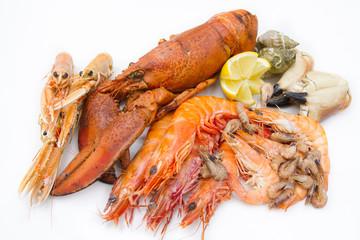 Photo sur Plexiglas Coquillage fruits de mer