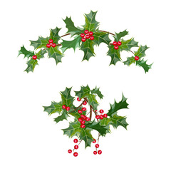 A sprig of mistletoe plants. Green leaves ,red berries. Christmas decoration.Vector illustration.