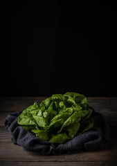Head of lettuce on dark background.