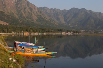 The Dal lake and the shikaras - Srinagar, Kashmir, India