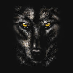 hand-drawing portrait of a black wolf