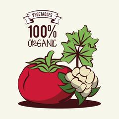 Organic vegetables icon vector illustration graphic design icon vector illustration graphic design