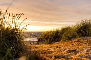 Sanddüne im Sonnenaufgang