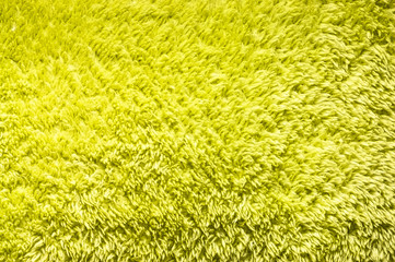 Bright green plush or wool texture