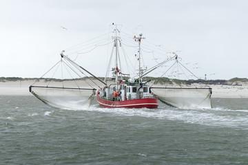 Krabbenfischer in der Nordsee