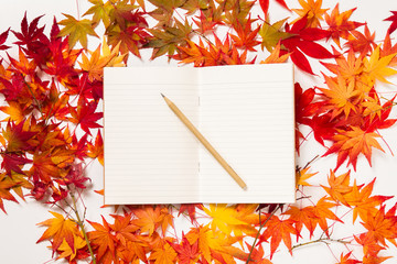 Blank paper page on a red maple leaves