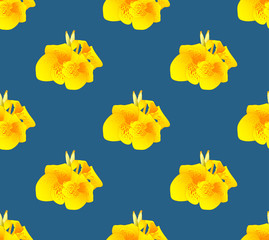 Yellow Canna Lily Flower Seamless on Indigo Blue Background