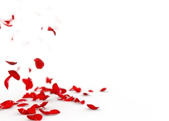 Red rose petals fall to the floor