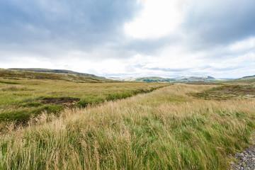 rural landscape near Skeggjastadir farm in Iceland