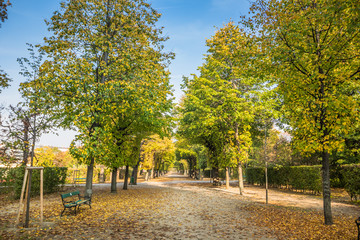 Augarten in Herbst in Wien