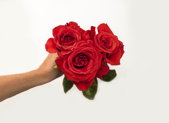 Small bouquet of roses in hand, top view