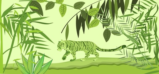 Tiger walking in jungle under green slhouettes of trees. Tropical wildlife scene, vector illustration
