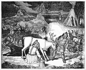 Ancient shepherd milking a reindeer in a reindeers breeding. Old Illustration by unidentified author, published on Magasin Pittoresque, Paris, 1834