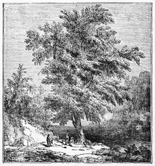 Big tamarind tree (Tamarindus indica) near to rocks and vegetation with two small people beneath. Old Illustration by unidentified author published on Magasin Pittoresque Paris 1834
