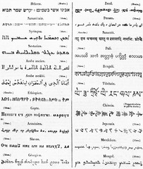 Ancient table list of exotic alphabets, black fonts on white paper. Published on Magasin Pittoresque Paris 1834