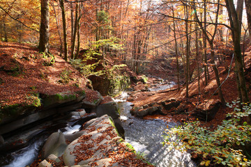 Waterfall in a beech forest in autumn.
